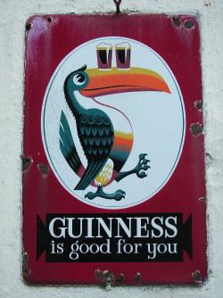 Guinness is good for You, tukan med två fyllda ölglas på näbben